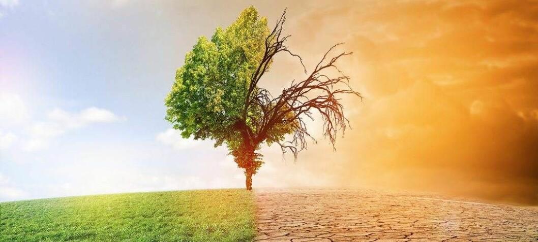 Innlegg: Klimaendringer og klimainstallasjoner