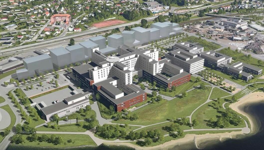 Illustrasjon av Nytt Drammen sykehus: LINK arkitektur, Ratio og Bølgeblikk