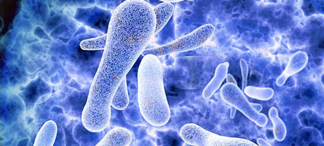 Legionellaoppgaver – bortkastet tid og energi?