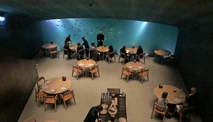 KJENT: Synet av Under er blitt kjent for både arkitekter og restaurantkritikere.