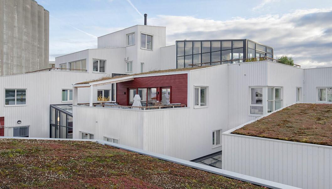 Vindmøllebakken i Stavanger.