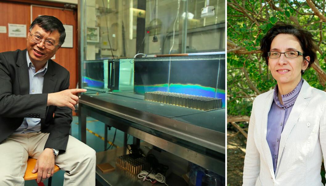 VIRUSTALERE: Yuguo Li og Jelena Srebric er blant professorene som stiller på norskarrangert konferanse for å lære forskere og bransje om virus, smitte og ventilasjon.