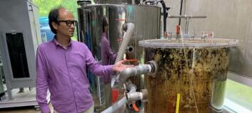 Betaler dobrukerne for biogass